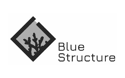 Logotipo da spin-off Blue Structure